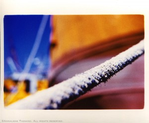 A cross process image of a worn, old rope in a boatyard outside Puerto Madryn, Argentina. Blue sky and colorful boats in the background.